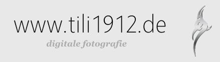 tili1912.de